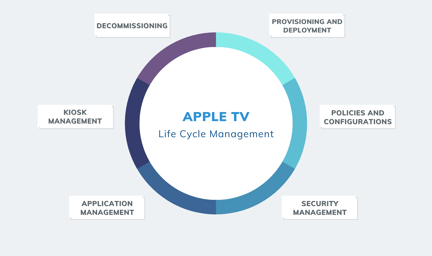 Apple TV Management - Life Cycle Analysis